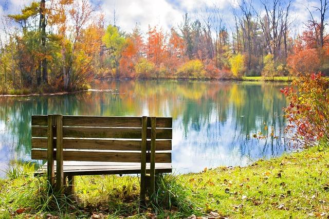 lavice u rybníka